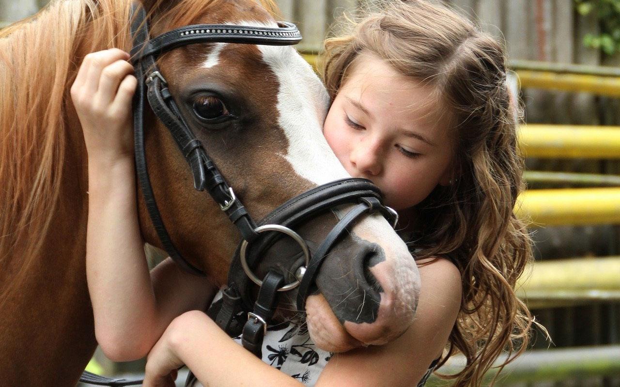 Ruta a caballo ecuestre